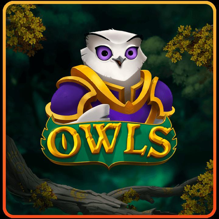 ทดลองเล่น Owls