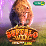 ทดลองเล่นสล็อต Buffalo Win